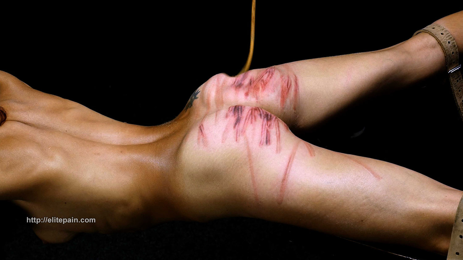 Bdsm extreme torture pain nipples male