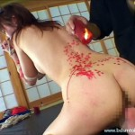 asian-hotwax-bdsm-05