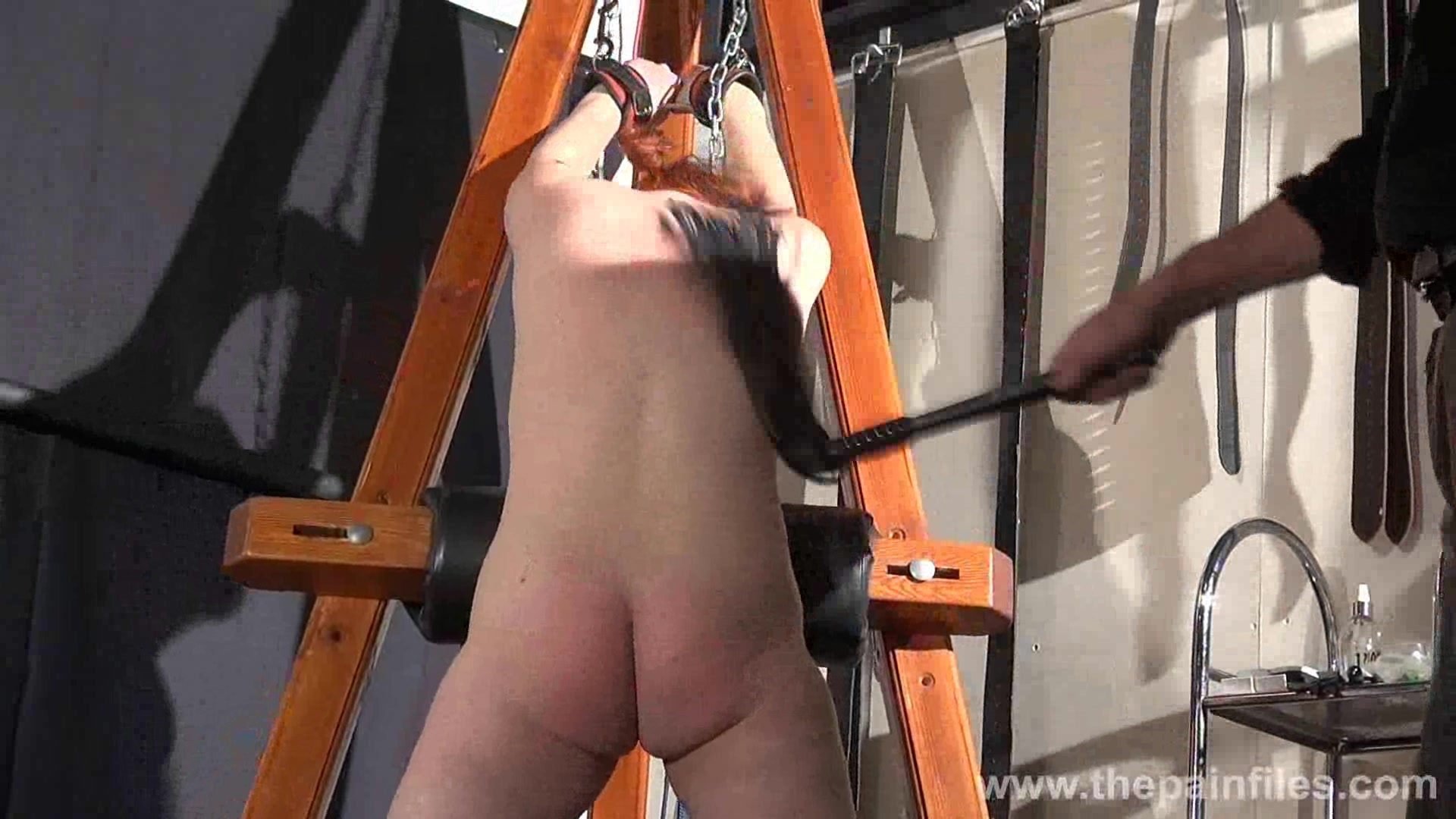 Tied to the whipping pole